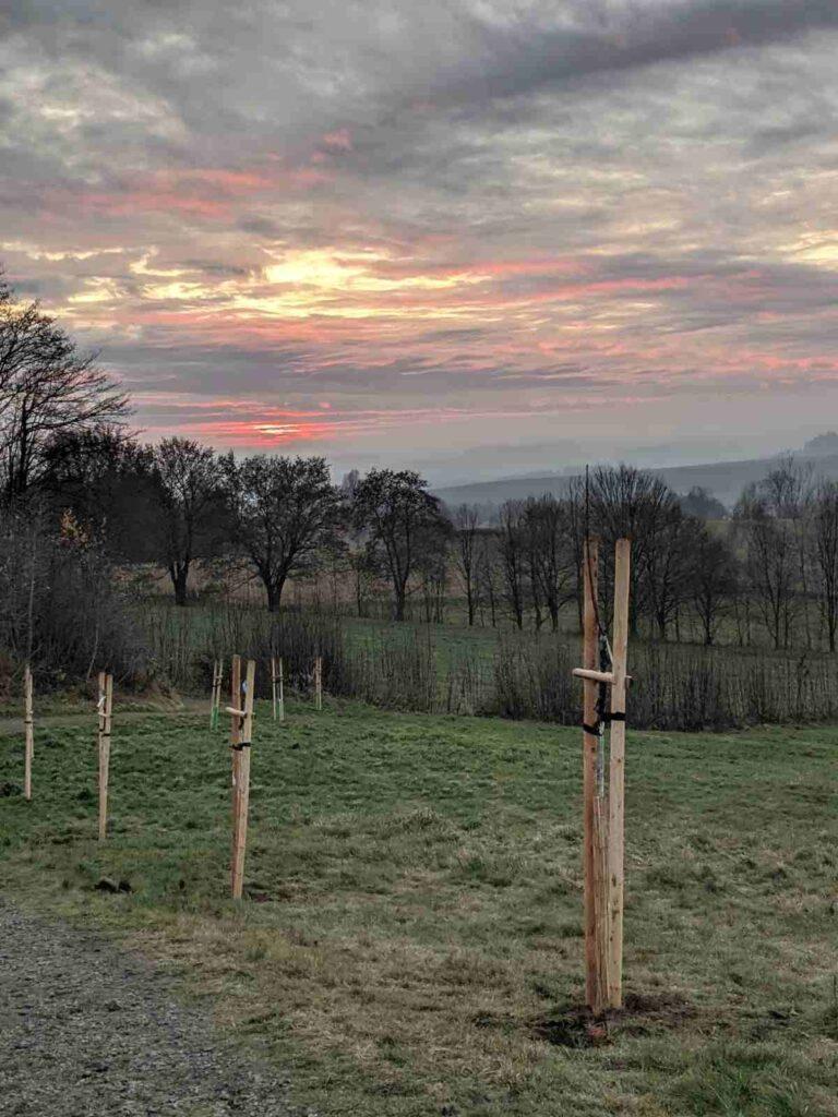 Výhled ze Tří křížů přes alej na západ slunce